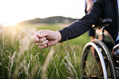 A hand of a senior man in wheelchair holding grass flower. An unrecognizable adult son with his father on a walk in nature at sunset. Close up.