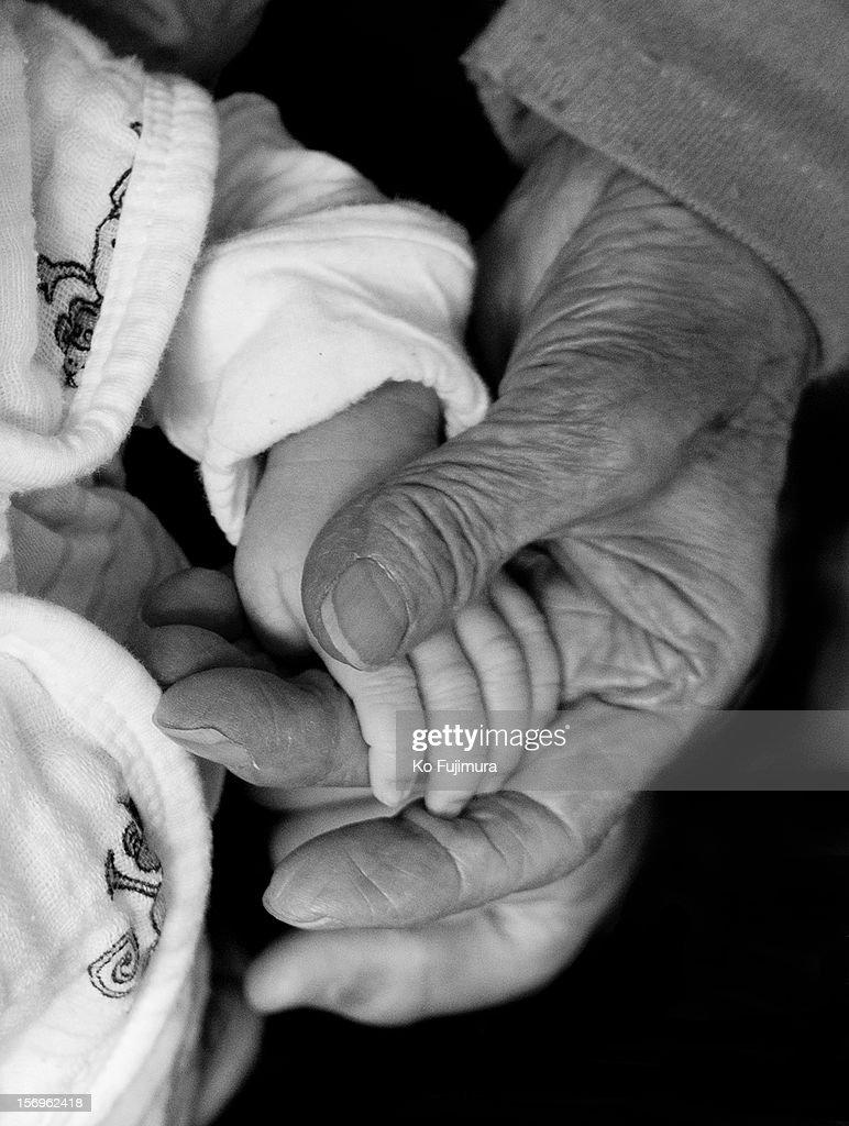 Hand of baby and grandma : Stock Photo