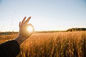 Hand of farmer encircling sun in wheat field at dusk, Plattsburg, Missouri, USA