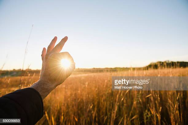 Hand of farmer encircling sun in wheat field at dusk, Plattsburg, Missouri, USA