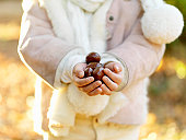 Hand of girl who has chestnut in autumn