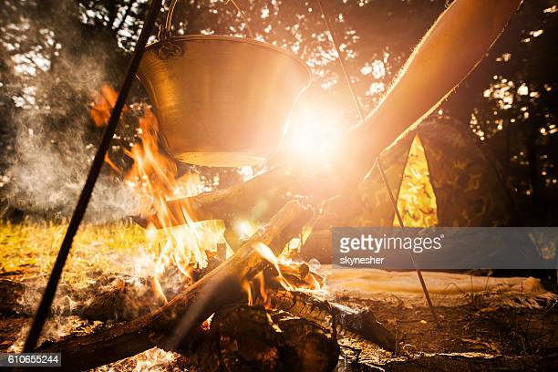 Hand of person putting wood log on campfire while cooking.