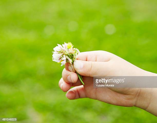 Hand of young girl with flower