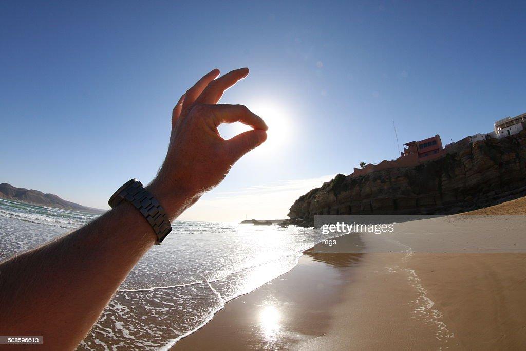 Hand : Stock Photo
