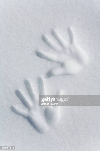 Hand prints in snow