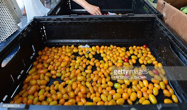 A hand reaches into a basket beside a dwindling supply of yellow cherry tomatoes available at Monterey Park's Friday evening Farmers Market in...
