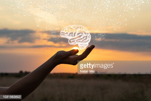 Hand shows the brain . : Stock Photo