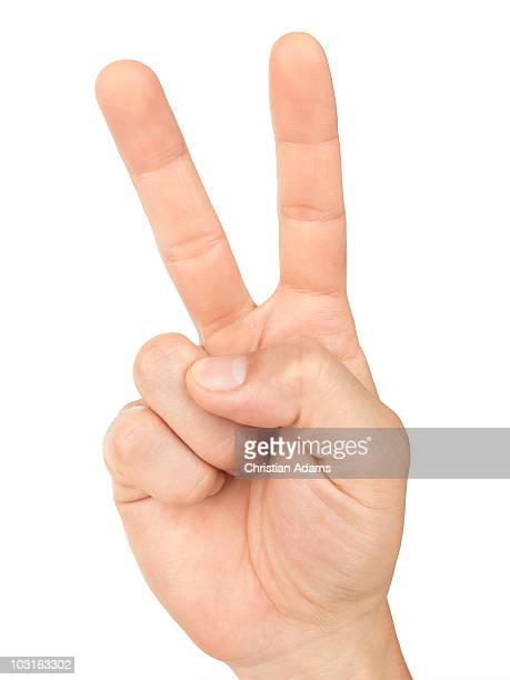 hand sign - victory
