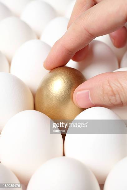 Hand Touching Gold Egg from a Crowd of Ordinary Eggs
