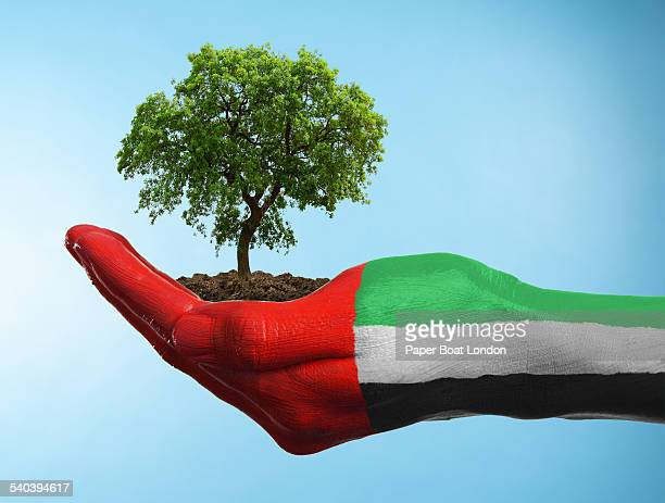 Hand with flag of UAE holding a tree