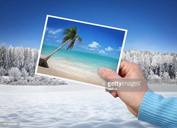 Hand With Photo of  Beach on Winter Background