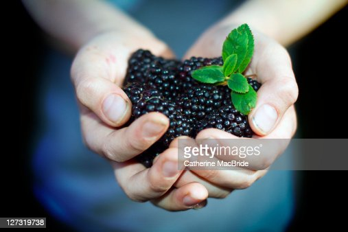 blackberries childhood and boy Cancer child health immunology and inflammation practice and service  improvement recovery and rehabilitation across the lifespan neuroscience.