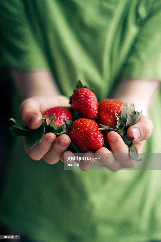 A handful of strawberries : Stock Photo