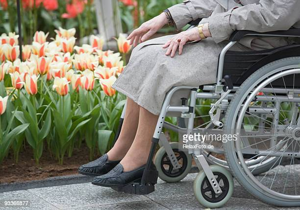 Handicapped Senior woman sitting in wheelchair touching flowers