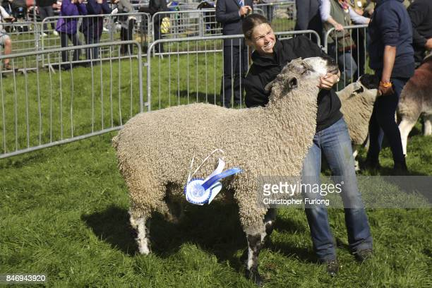 A handler struggles with her ram during the Westmorland County Show on September 14 2017 in Milnthorpe England The Westmorland County Show is...
