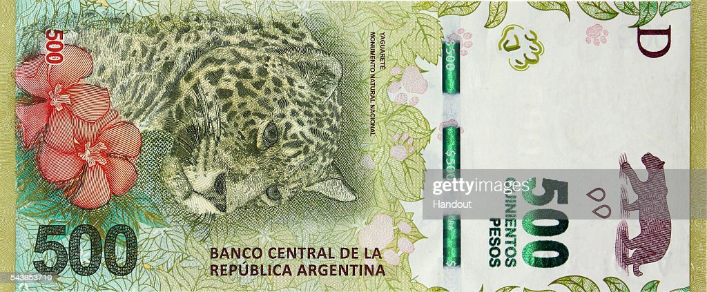 Handout picture released by the Central Bank of Argentina showing the new 500-peso bill carrying an image of the Yaguareté, a type of jaguar, to represent the North-East region on June 30, 2016 in Buenos Aires, Argentina. The new 500 Peso banknote takes over from the 100 Peso note as Argentina's biggest denomination note.