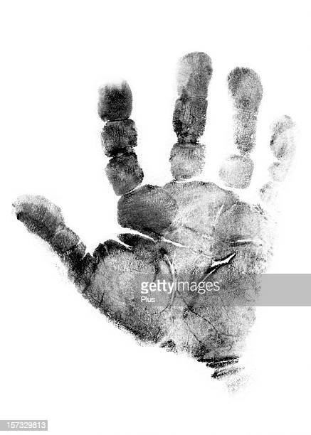 Handprint of a two-months old baby