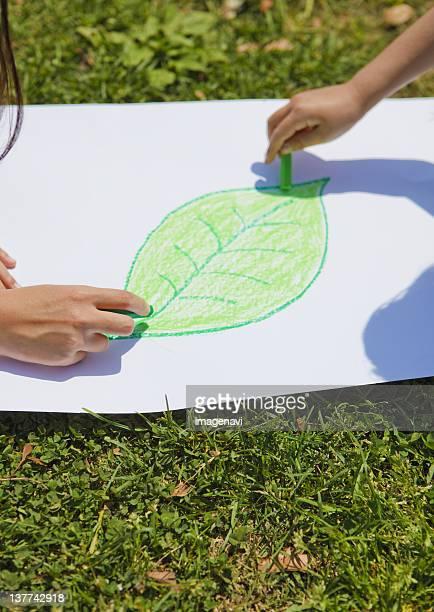 Hands drawing leaf