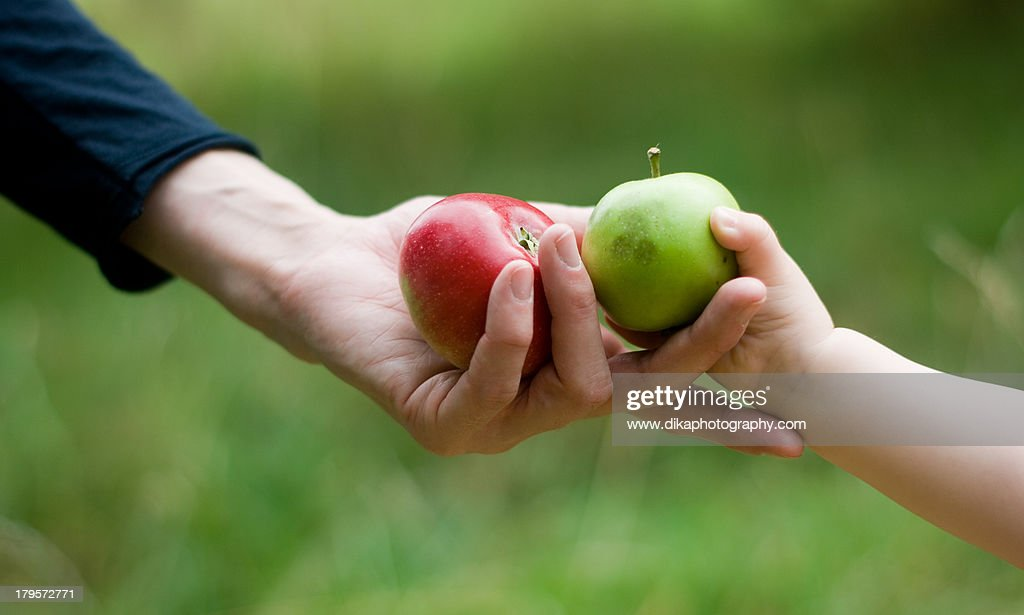 Hands giving apples