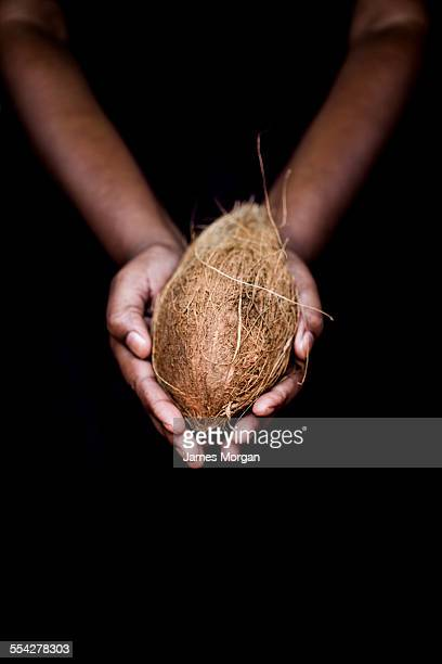 Hands holding a coconut