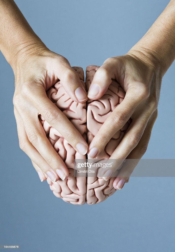 Hands holding brain forming heart shape : Stock Photo