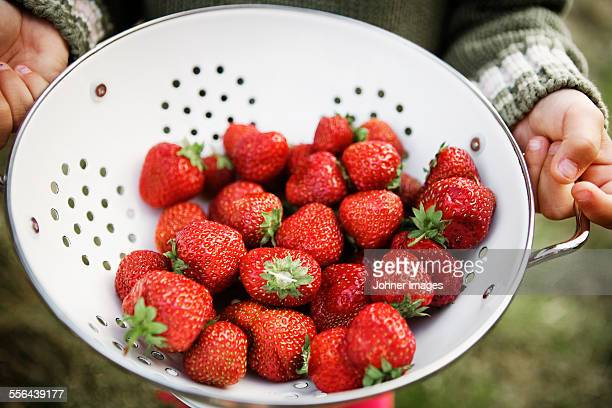 Hands holding colander with strawberries