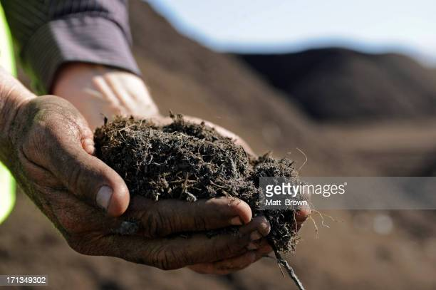 Hands holding Compost