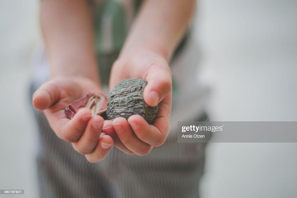 Hands Holding Rocks