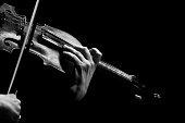 Hands musician playing the violin in black and white