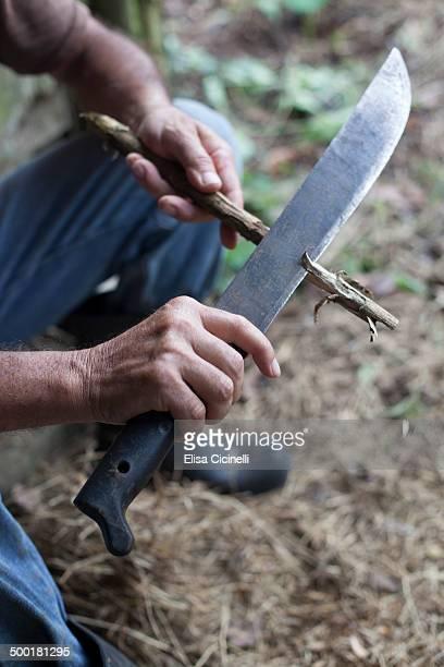 Hands of a farmer in Costa Rica using a machete