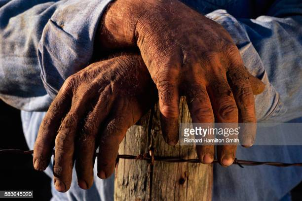 Hands of Farmer Leaning on Fence Post
