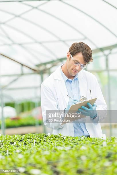 Schöne Biologe untersuchen Pflanze Wachstum