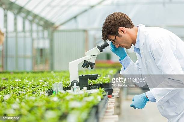 Handsome botanist looking into microscope