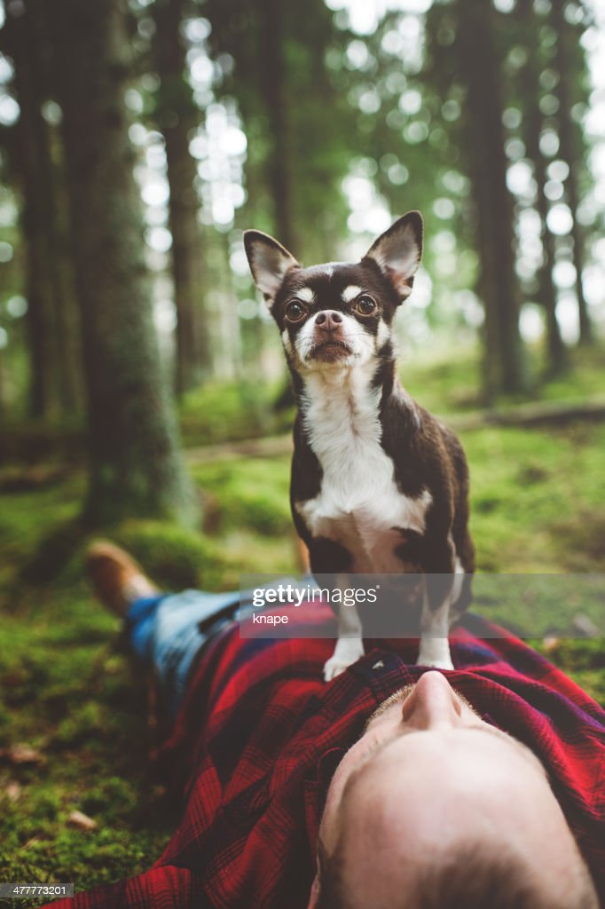 Handsome man lying down in nature with dog on top