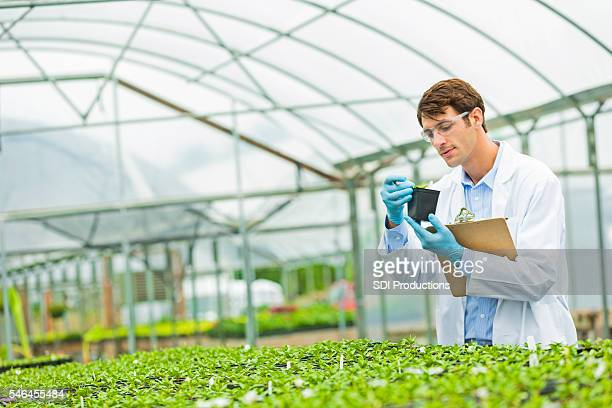 Handsome scientist working in a greenhouse