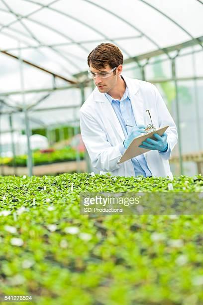 Hübsche junge Wissenschaftler, die Notizen auf Pflanzen