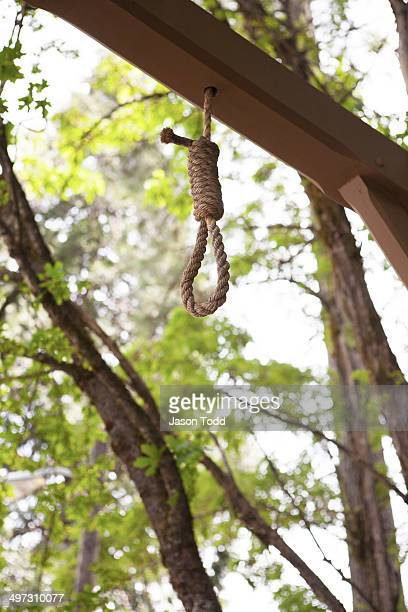 Hang noose from gallows pole