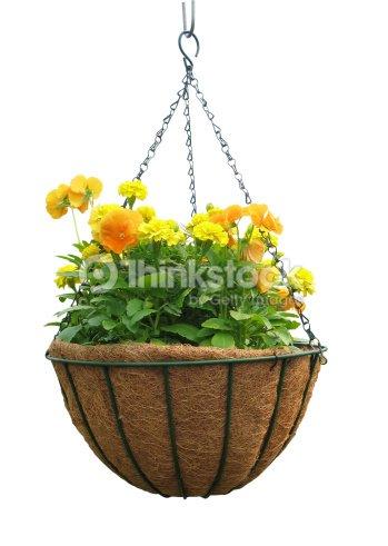 suspension florale photo thinkstock. Black Bedroom Furniture Sets. Home Design Ideas