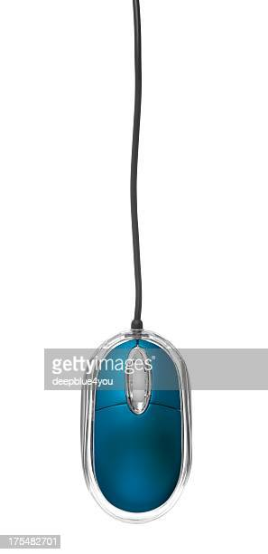 Hanging blue pc mouse on cable isolated