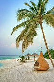 Hanging chair under a palm tree on a beach at Maldives resort