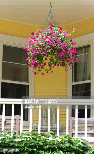 Hanging basket stock photos and pictures getty images for Front porch hanging plants