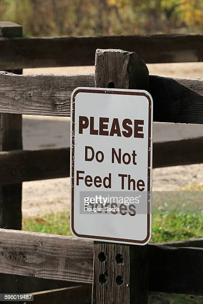 Hanging sign that warns not to feed horse