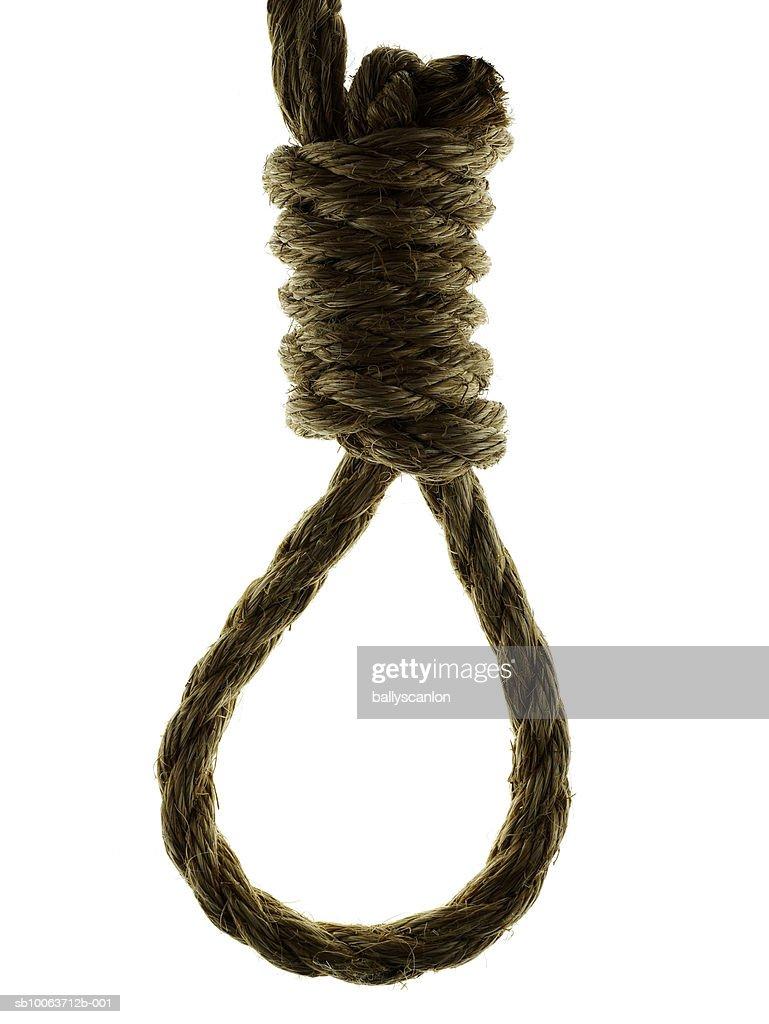 Hangman's noose on white  background