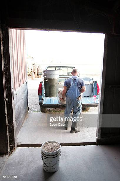 Hank Keizer loads feed onto his pickup truck to feed cattle on his farm June 29 2005 near Delavan Wisconsin Keizer works the farm with his father and...