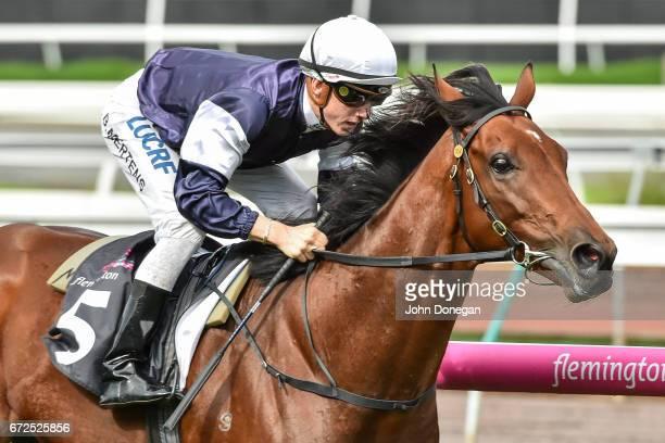 Hans Holbein ridden by Beau Mertens wins the Flt Lt Peter Armytage Handicap at Flemington Racecourse on April 25 2017 in Flemington Australia