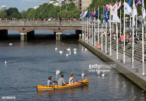 Hansestadt Hamburg rowers and swans on the Inner Alster in the center of Hamburg