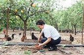Happiness women planting melon seedling in organic garden