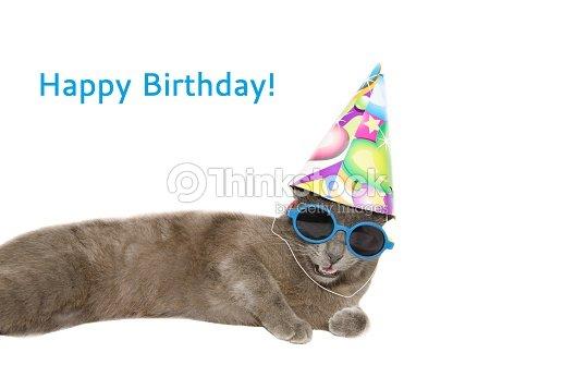 Happy Birthday Card With Cat Stock Photo