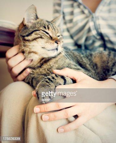 Happy cat lying on woman's laps.