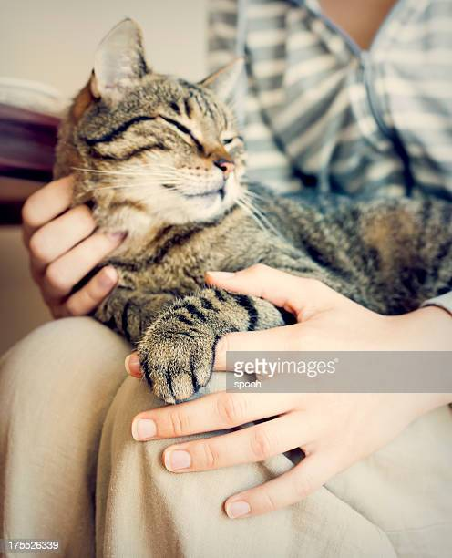 Happy cat lying on woman's laps.
